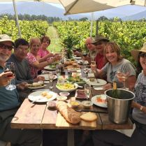 9633745-resized-picnic-in-vineyard-garden-route